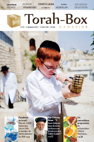 Torah-Box Magazine n°118 - France - Ki-Tavo